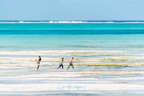 Zanzibar 010.JSP lrs.jpg