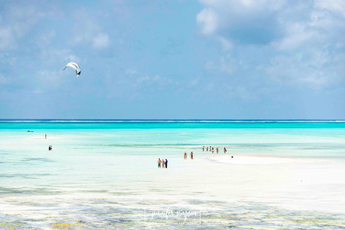 Zanzibar 002.JSP lrs.jpg