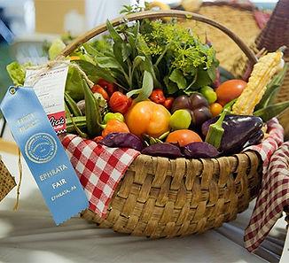 contests-exibits_edited.jpg