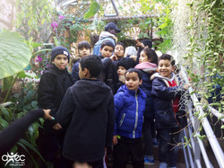 Visite des jeunes adhérents de l'association AVEC au jardin botanique.