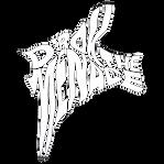 D'Rok_logo_white_edited.png