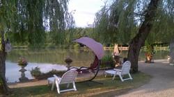Carp in France
