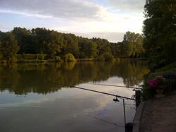 Fishing carp in France