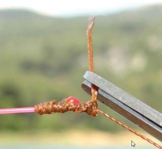 Qui n'a pas rêvé d'avoir le plus beau noeud ? Les plus beaux décrits ci-dessous :