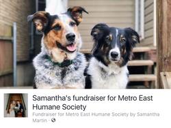 Cato & Rue's Enrichment Fundraiser