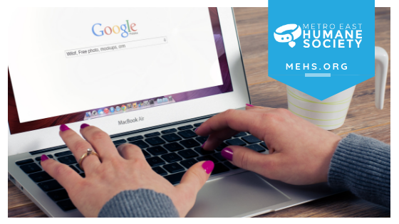 Image shows hands typing on laptop. MEHS logo and website are typed over image.