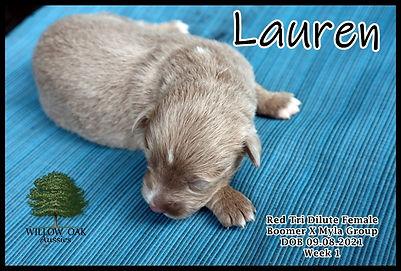 Week 1 LaurenIMG_0968.JPG