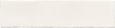 MANUAL BONE COBSA 7,5x30.tif