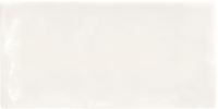 MANUAL BONE COBSA 7,5x15.tif