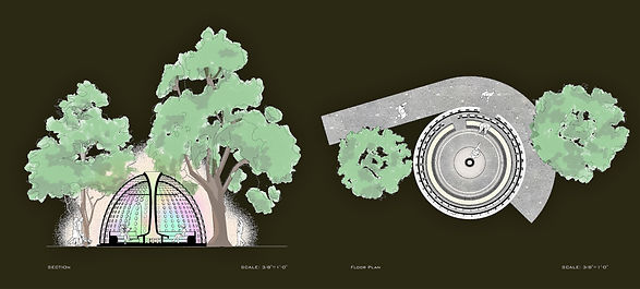 midterm vandom plan and section.jpg