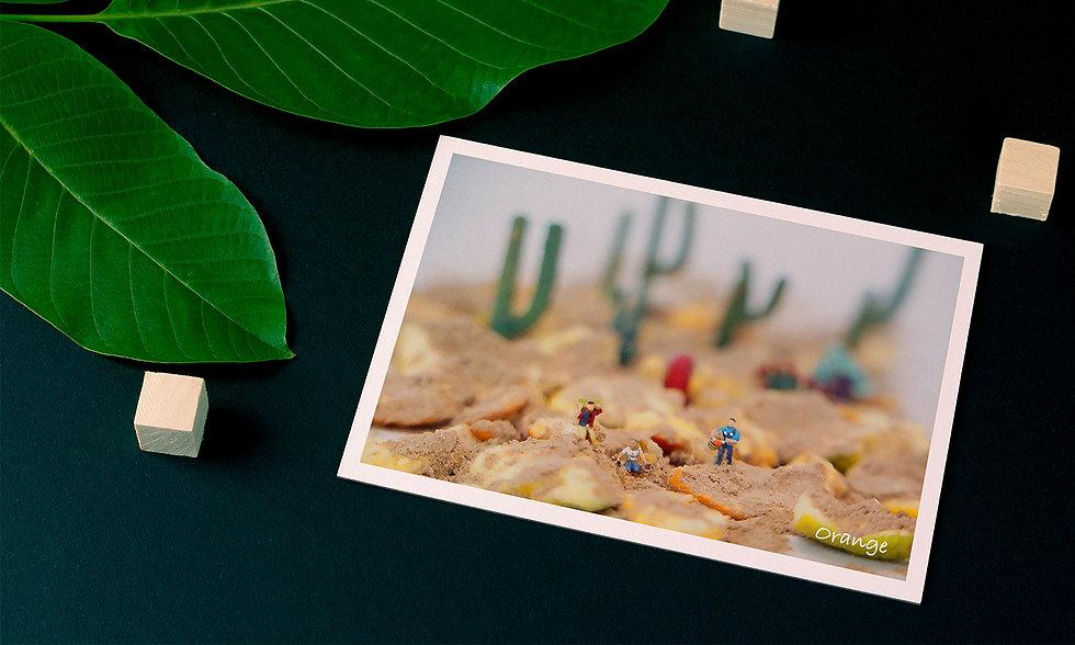 cover postcard.jpg