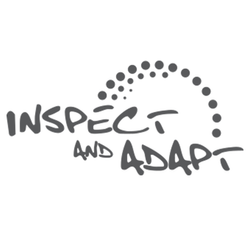 inspect and adapt.png