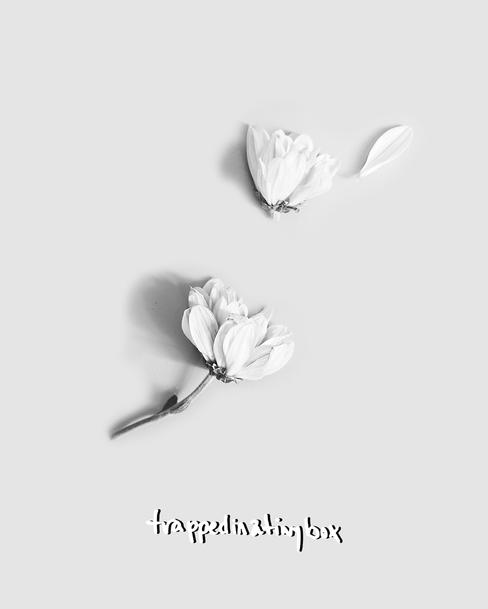 flower-wlogo.png