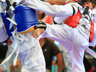 Why Martial Artists Need to Develop Their Lower Body