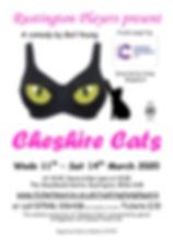 Cheshire Cats Poster.jpg