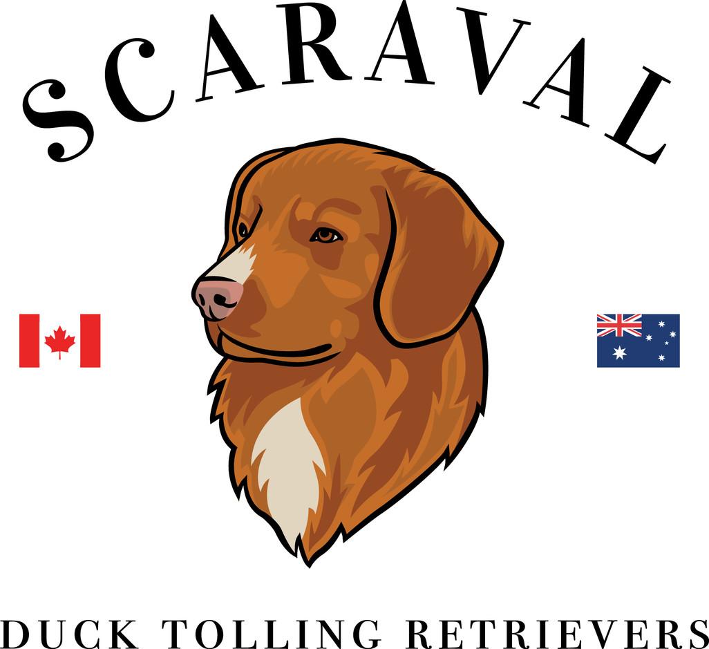 Scaraval Logo.jpg