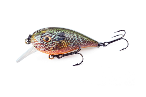 NATURAL PUMPKINSEED