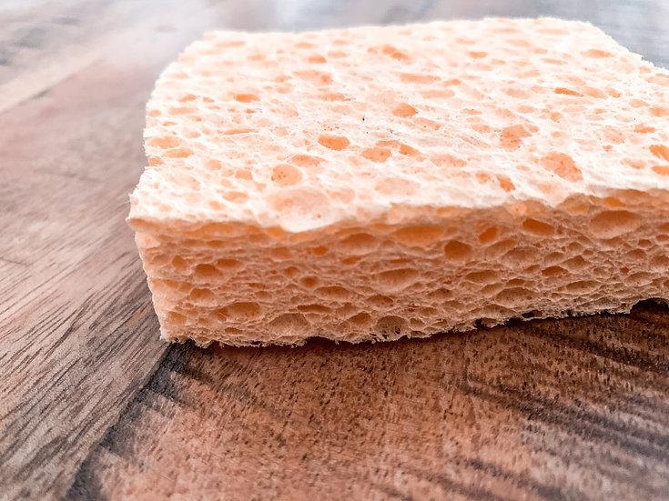 Compostable UK Sponge- 2 pack
