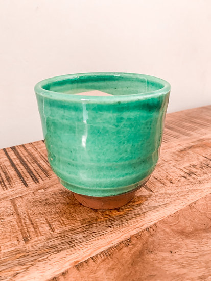 Green House Plant Pot