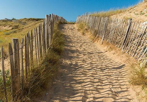 beach-1720547_960_720.jpg