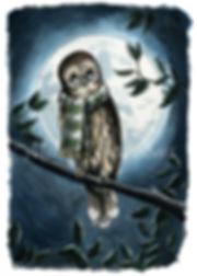 Owl_Scarf.jpg