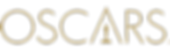91Oscars-Logo.png