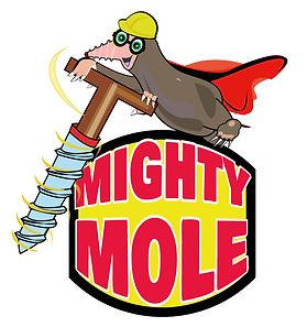 mightymolev3new-mockup.jpg