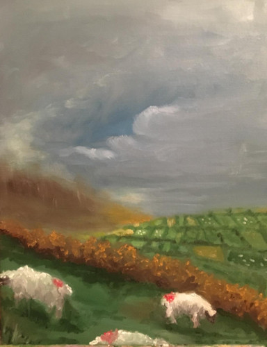"""Sheep of Dingle"""