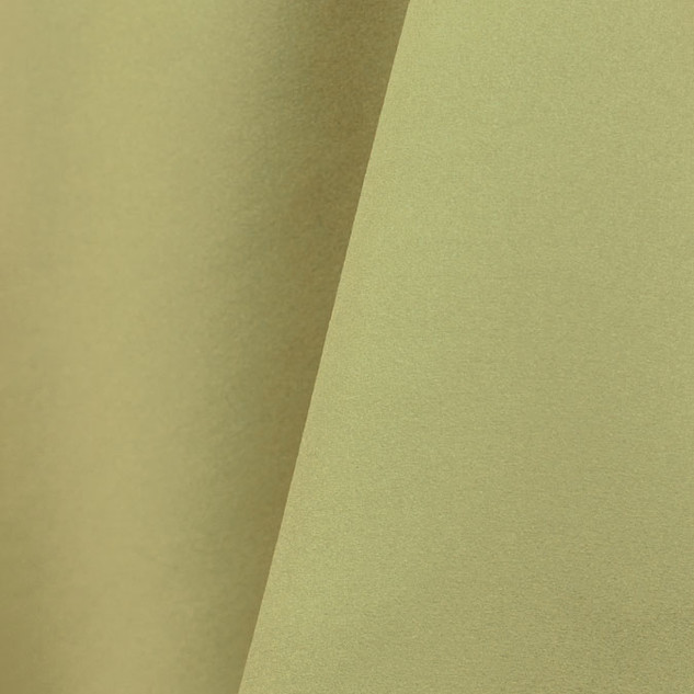 Lamour Matte Satin - Light Olive 620.jpg