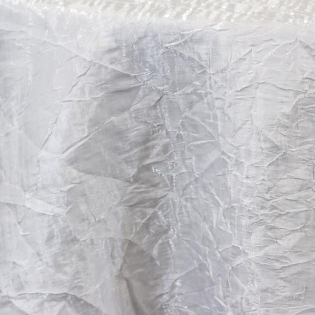 Iridescent Crush - White 785.jpg