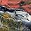 Thumbnail: Salmon Gum Hills