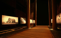 Ashes & Snow Nomadic Museum