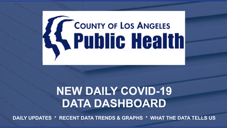 County of LA Public Health website