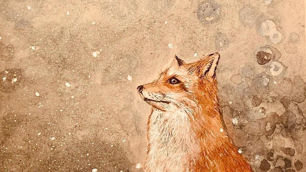 Fox and Snow
