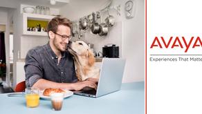 Nuevos dispositivos Avaya para trabajar desde cualquier lugar