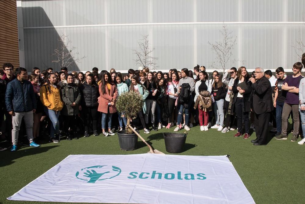 Jóvenes granadinos participantes del programa Scholas durante la jornada de cierre en la que se plantó el Olivo de la Paz como símbolo del compromiso con el trabajo desarrollado.
