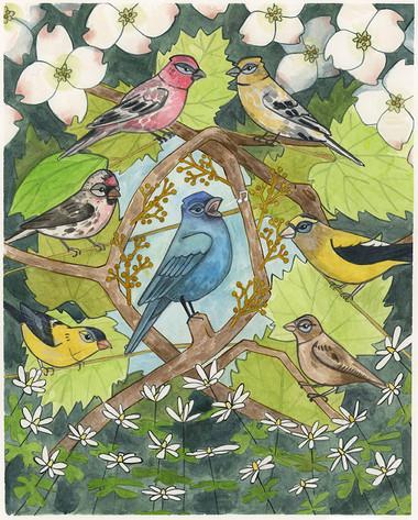 Finch Color Scheme