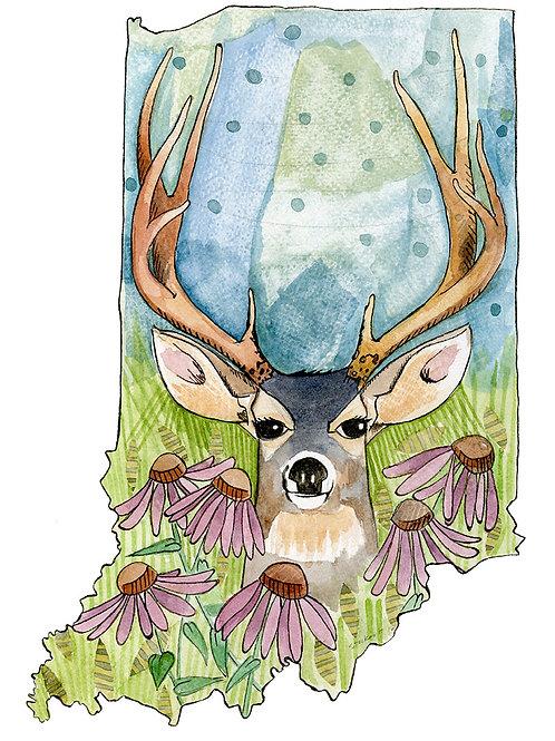 Indiana Deer 8x10 Print