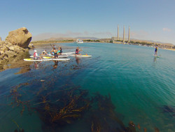 Group of paddlers on paddleboards.