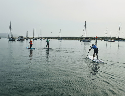 SUP paddlers on the water