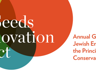 Hebrew Play is selected as a grantee of  the Jewish Theological Seminary Seeds of Innovation Project