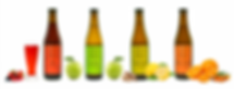 booch line up f large.png