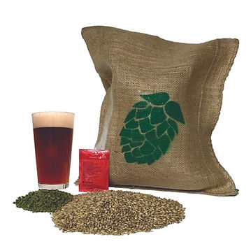 all grain beer kits