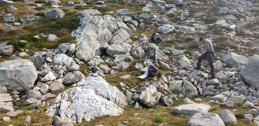 Icefields Gold Project - Vertebrae Ridge Property - British Columbia, Canada.jpg