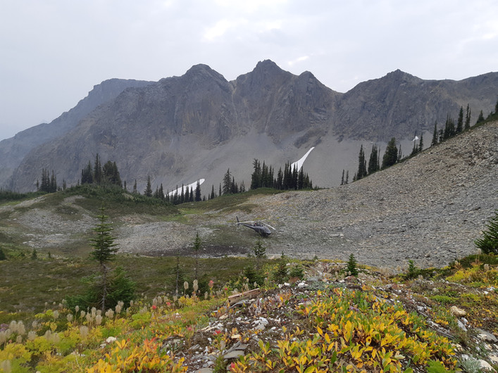 Icefields Gold Project - Gold Mountain Property - British Columbia, Canada