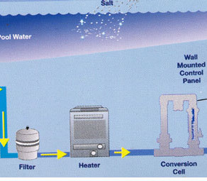 Facts About Salt Systems
