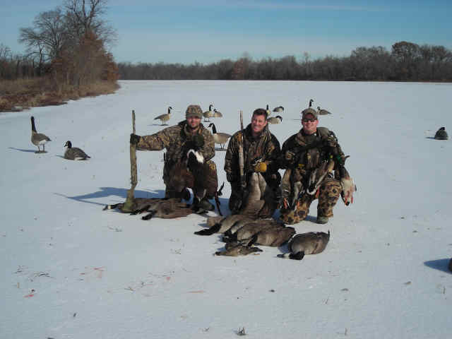waterfowl_027