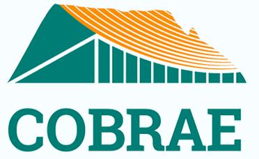 7ª Conferência Brasileira sobre estabilidade de encostas | COBRAE VII