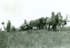 Great grandfather Sture & Grandfather threshing ha