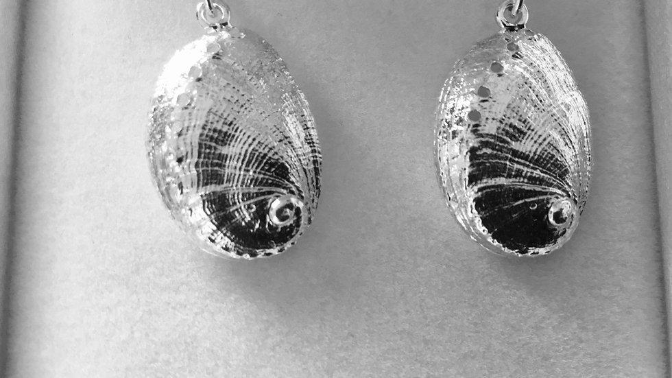 Silver Drop Ormer Shell Earrings